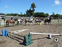 Learning in the arena at a Tasman Horse Rides holiday camp