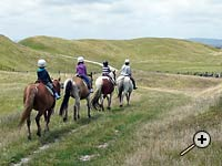 School holiday camp fun at Tasman Horse Rides
